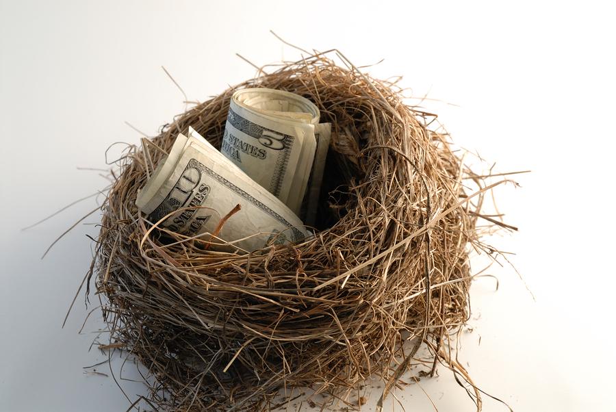 """Money Rolled In A Nest """"Nestegg"""""""