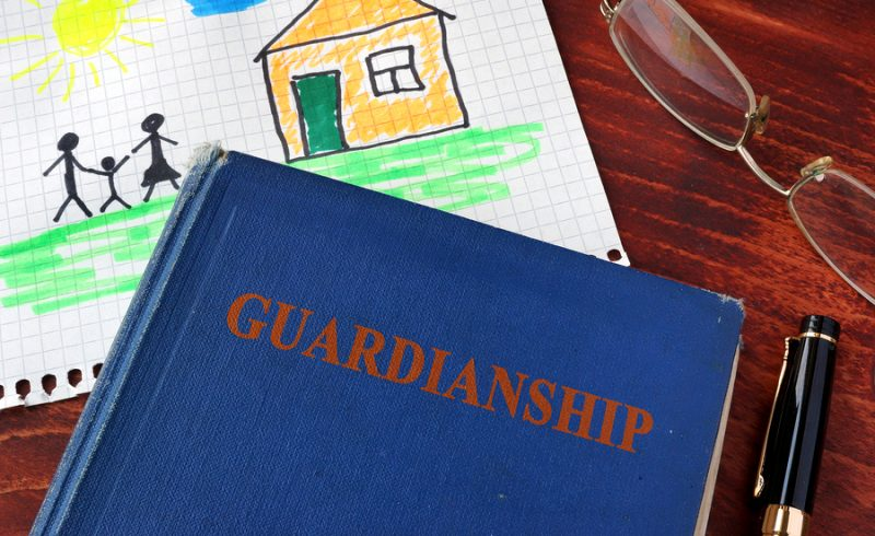 Guardianship Book and Kids painting with glasses. NM Guardianship
