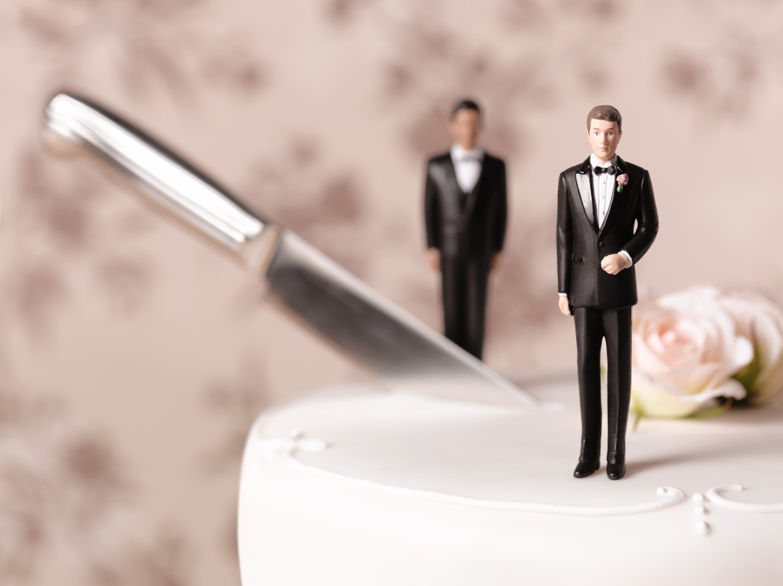 Same Sex wedding cake, cut in half