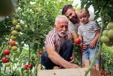 Family Working on Their Farm Land