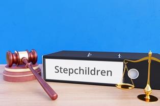 Blended family litigation