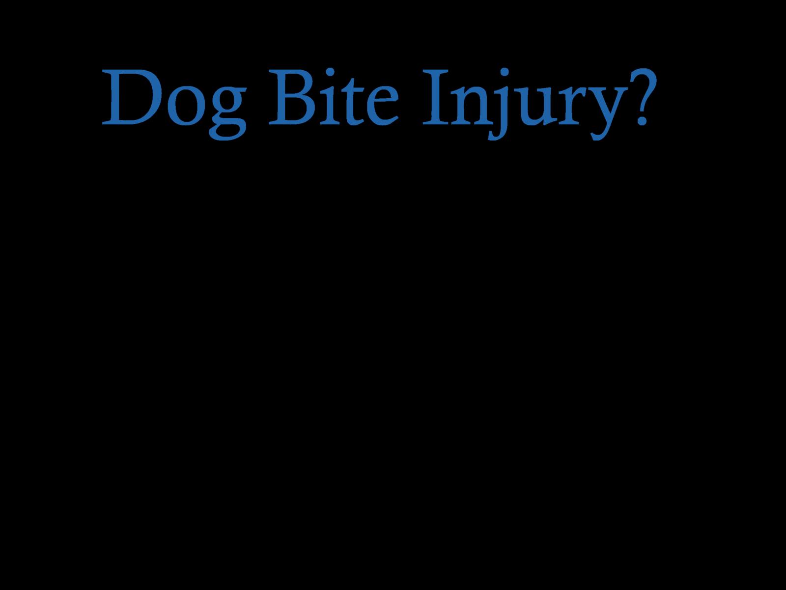 Dog bite injury lawyer KCMO