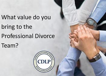 professional divorce team