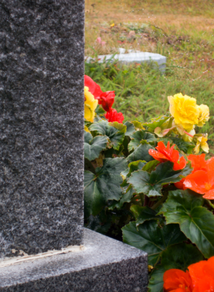 DC Death Benefits To Surviving Spouse After Death At Work