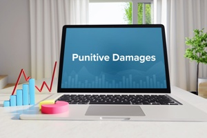 laptop comuter with the words punitive damages on the screen