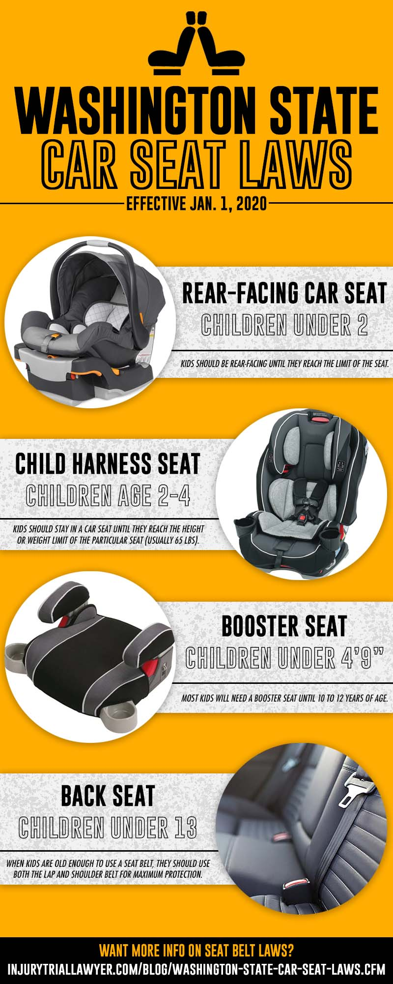car seat laws infographic