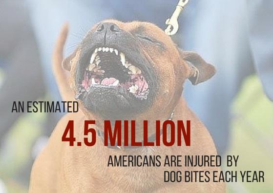 dog attack injury statistics