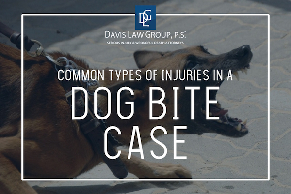 dog bite injuries