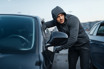 Auto Theft in Process
