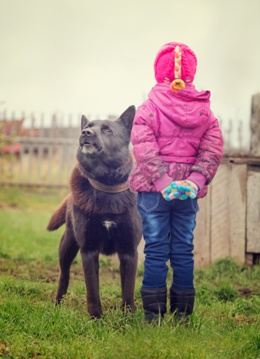 Young Child With an Apprehensive Dog