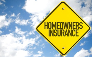 Homeowners Insurance and Premises Liability Cases