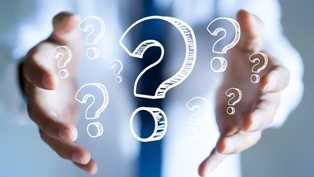 Several Questions Used in Interrogatories