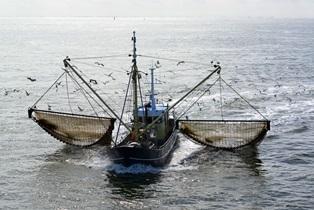 jones act for maritime injuries