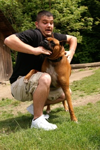 protect yourself from a dog attack