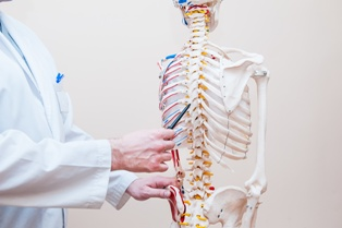 Doctor Explaining Spinal Cord Injuries With a Skeleton