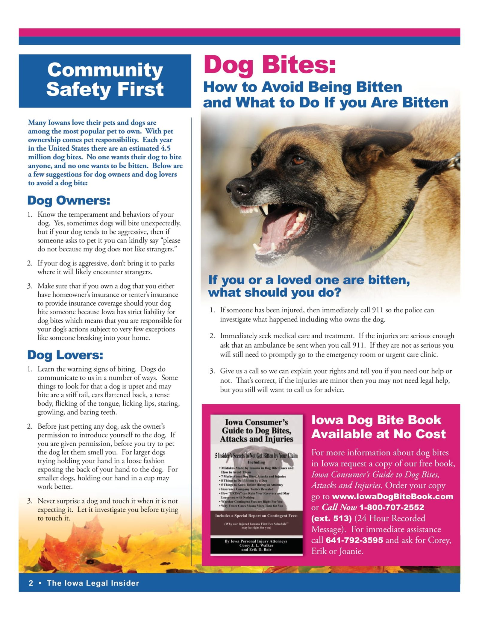 Dog Bites and how to avoid being bitten and what to do if you are.
