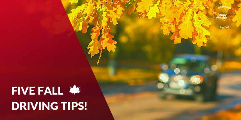 Car driving on leaf covered roads. Here are 5 autumn driving tips.