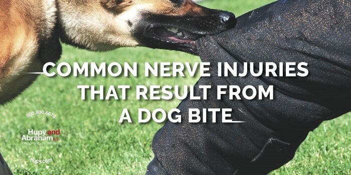 Dog bite causing nerve damage to mans leg