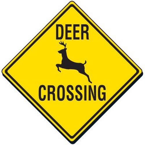 Traffic Signs indicating deer crossing ahead