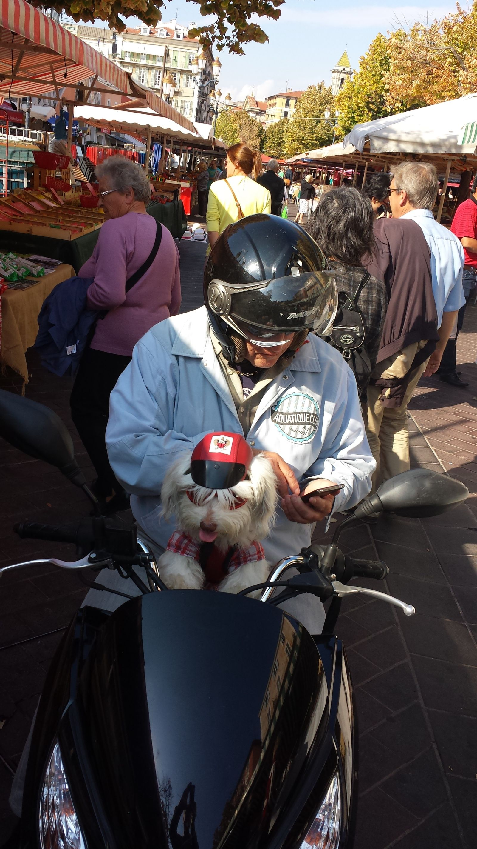 man on motorcycle with small white dog