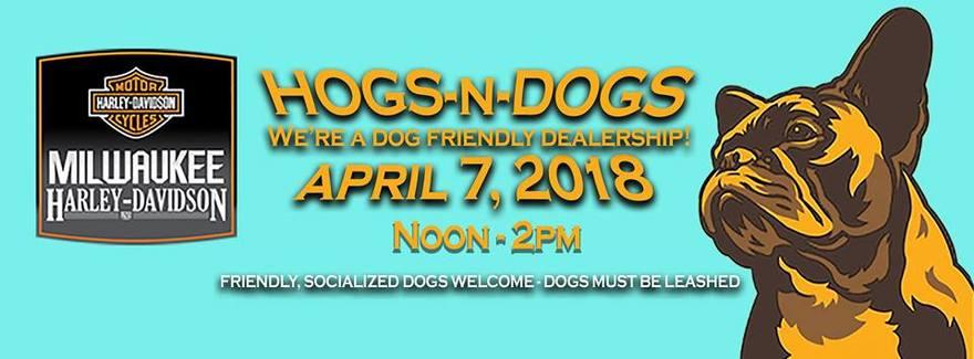Hogs N Dogs