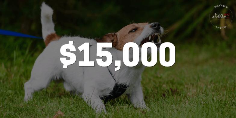 perlberg-$15k-dogbite-result