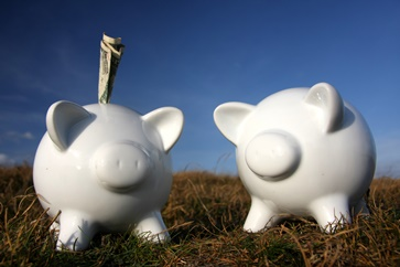 Joint Piggy Banks With Money