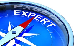 Compass Pointed at the Word Expert