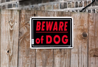 Most dangerous dogs that attack or bite in CA