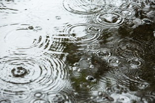 Wind-Driven Rain and What it Means for Your Insurance Claim