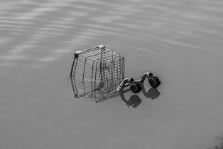 Shopping Cart Covered in Flood Water