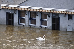 Flood waters have closed this restaurant indefinitely