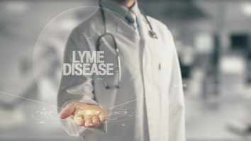 Lyme Disease Diagnosis After a Tick Bite in New England