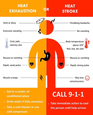 Summer Related Health Concerns