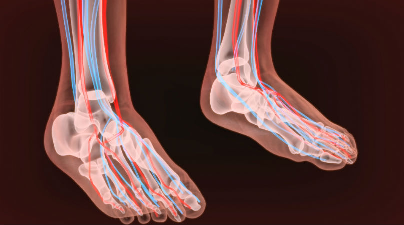 feet nerves