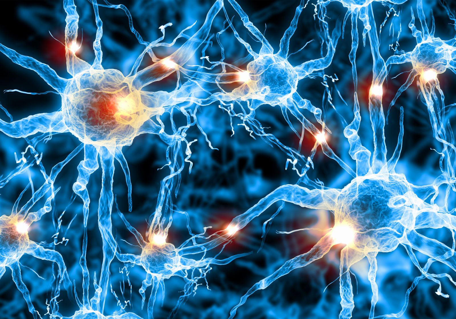 Picture of nerve synapses