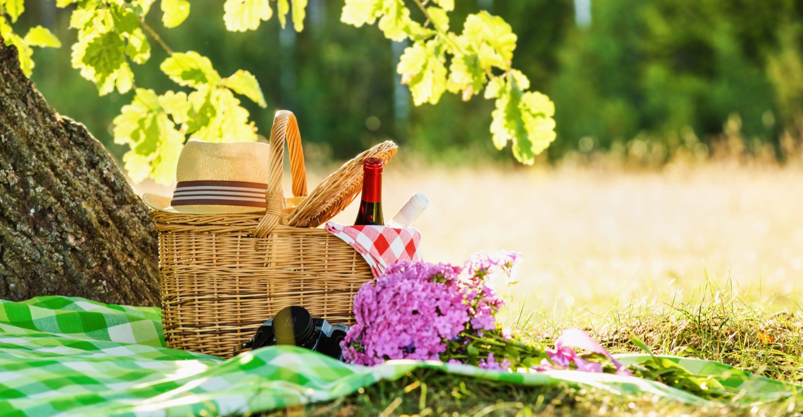 picnic basket next to trees with flowers