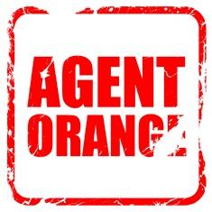 Agent Orange veteran disability