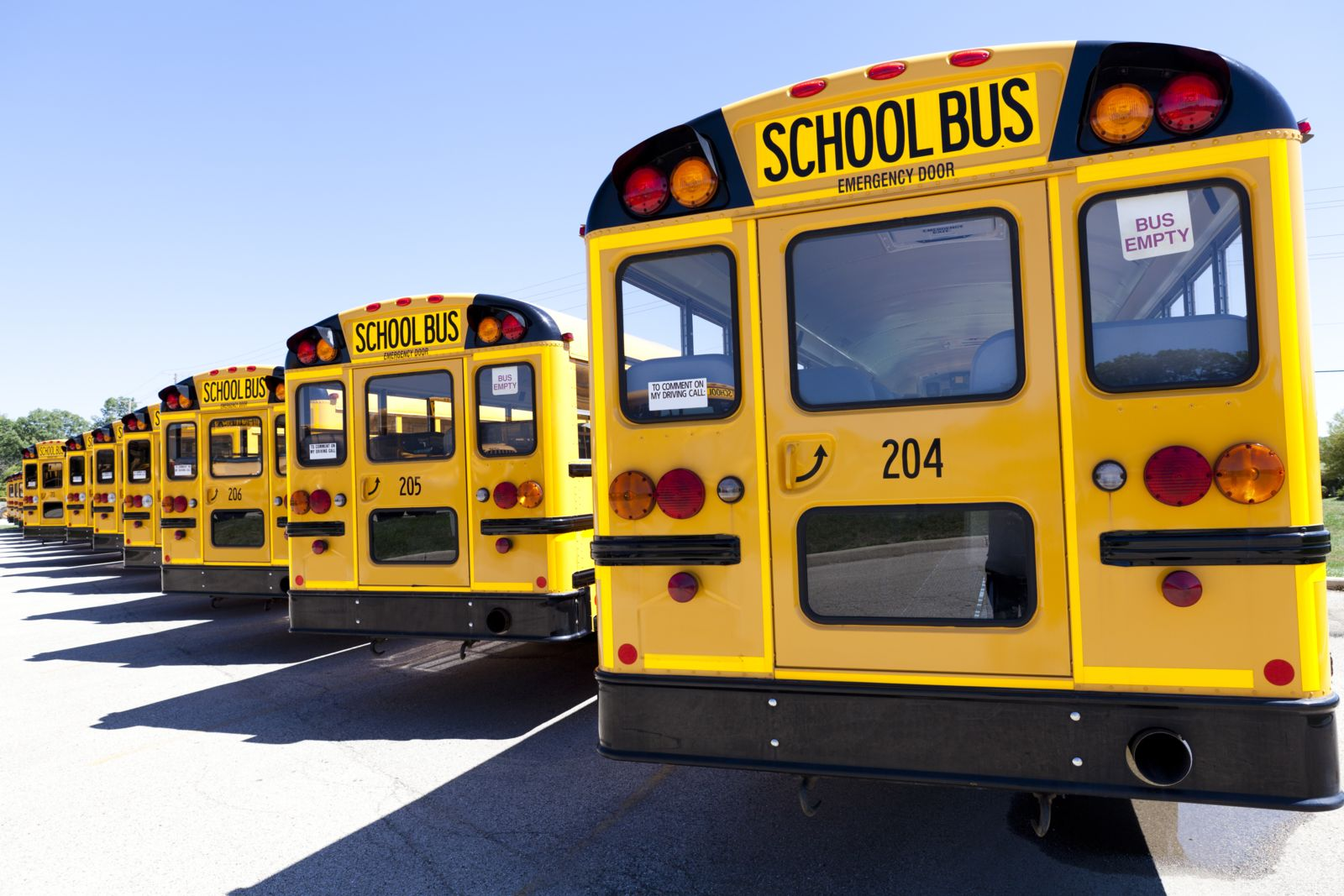 South Carolina school buses lined up