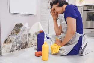 Military Renter Trying to Clean Moldy Wall in Uninhabitable House