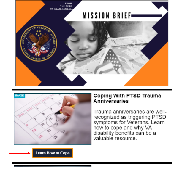 Screenshot of an attorney email marketing campaign focused on veterans affairs.