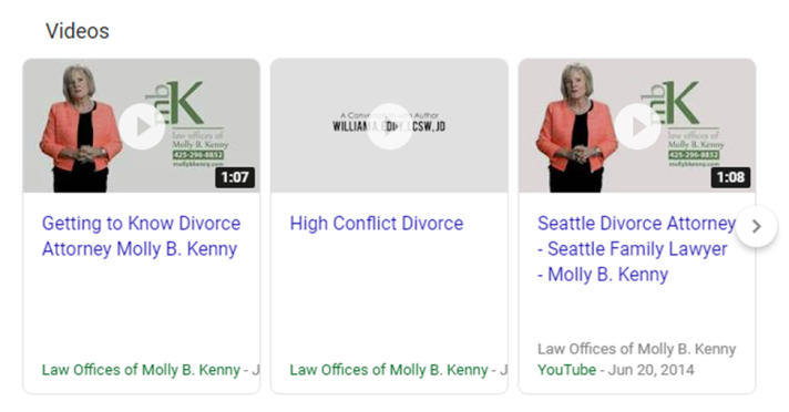 Multimedia SERP Example