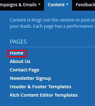 Accessing the home page in DSS navigation.