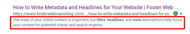 Meta description in google search