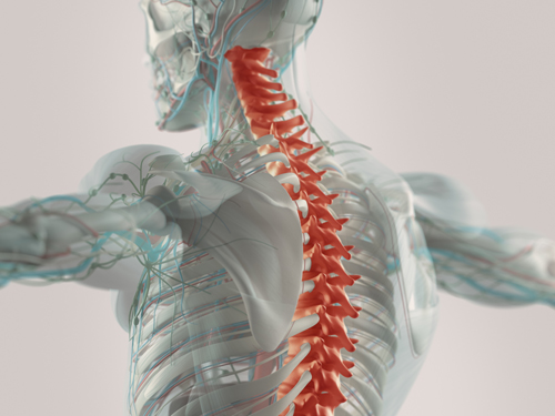 atlanta spinal cord injury attorney