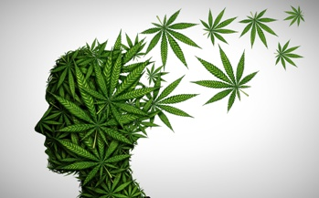 Miami DUI Marijuana Defense Lawyer Izquierdo Law Firm