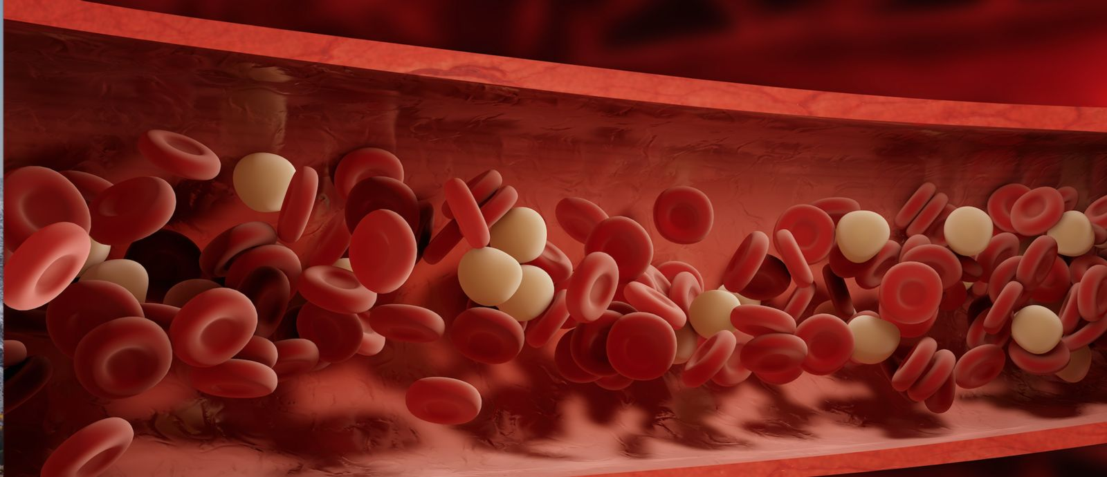 Platelets moving through the bloodstream