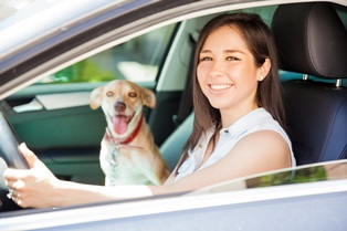 Surprising causes of distracted driving