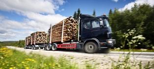Regulations for logging trucks Neblett Beard and Arsenault