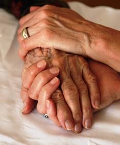 Establishing elder guardianship in FL